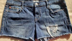 Hudson 10 inch Denim Short